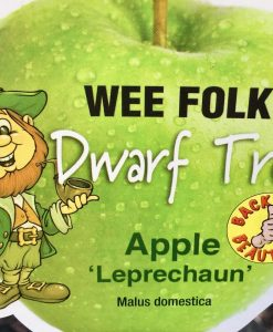 Dwarf Granny Smith Leprechaun